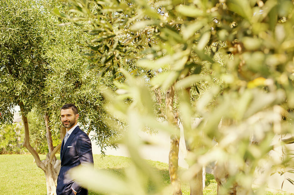 groom photo with olive trees as a background