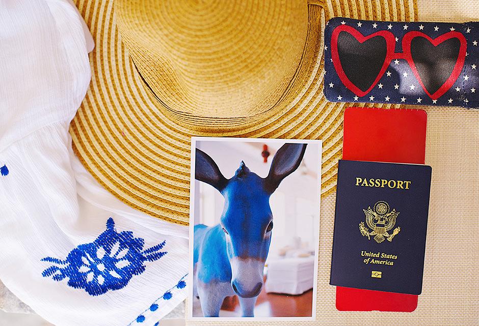 santorini donkey photo